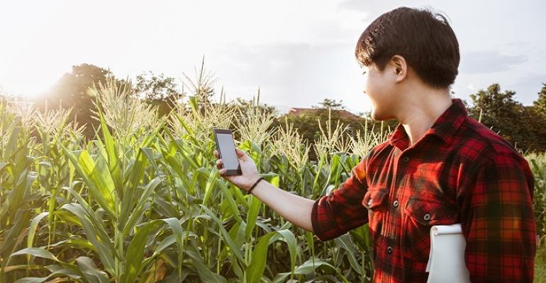 Internet pode aumentar produção agropecuária em até R$ 100 bi.jpg