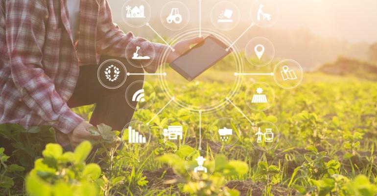 Como anda adoção de novas tecnologias é desafio pelo produtor rural brasileiro