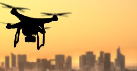drone-seal.jpg